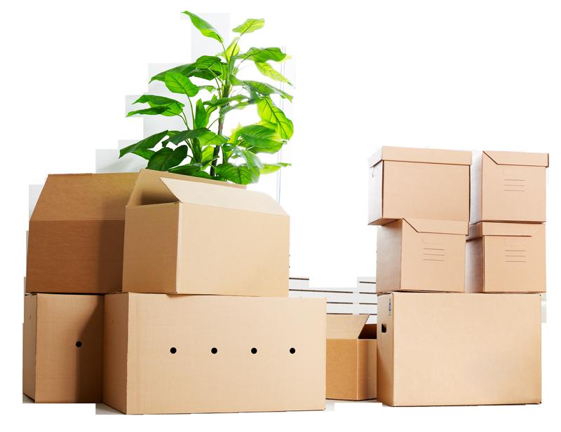 коробки в квартире