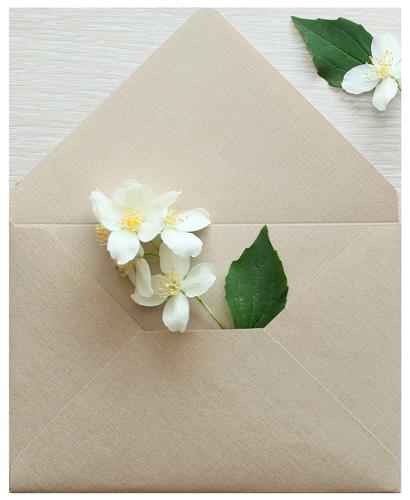 тканевый конверт